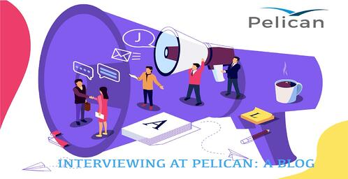 Interviewing At Pelican v1.1